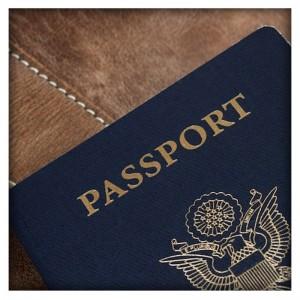 Passport Protector